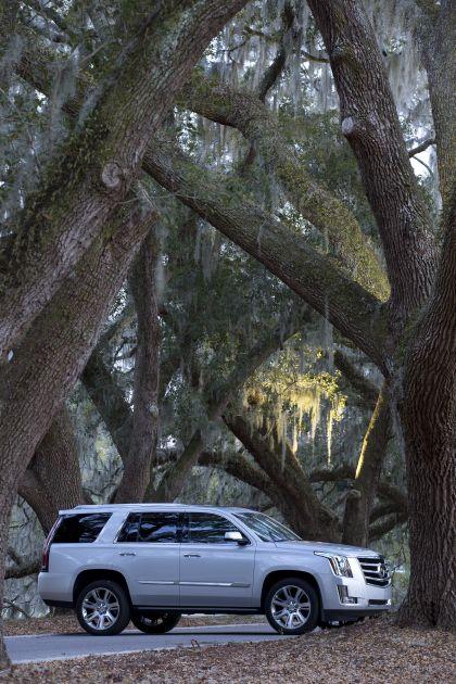 2015 Cadillac Escalade 49