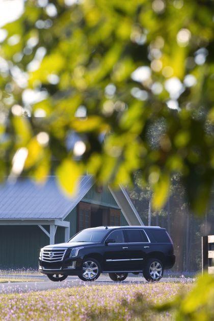2015 Cadillac Escalade 102