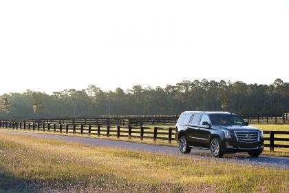 2015 Cadillac Escalade 110