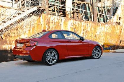 2013 BMW M235i ( F22 ) 15