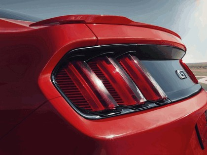 2014 Ford Mustang 19