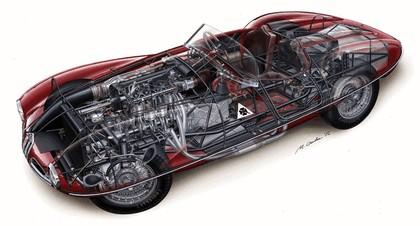 1952 Alfa Romeo Disco Volante 5
