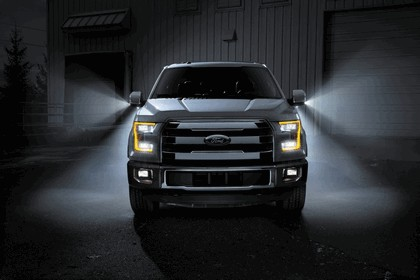 2014 Ford F-150 17