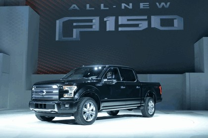 2014 Ford F-150 29