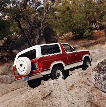 1980 Ford Bronco 14
