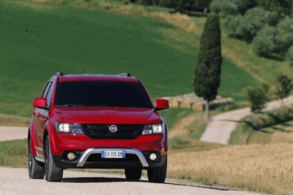 2014 Fiat Freemont Cross 17