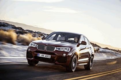 2014 BMW X4 ( F26 ) 5