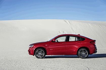 2014 BMW X4 ( F26 ) 15