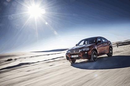 2014 BMW X4 ( F26 ) 23
