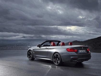 2014 BMW M4 ( F32 ) cabriolet 6
