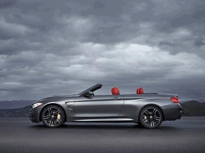 2014 BMW M4 ( F32 ) cabriolet 10