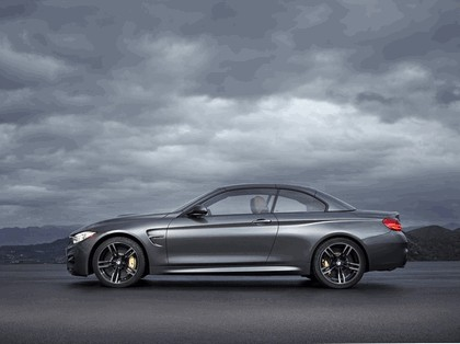 2014 BMW M4 ( F32 ) cabriolet 12