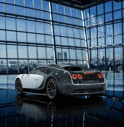 2014 Bugatti Veyron 16.4 Vivere by Mansory 2