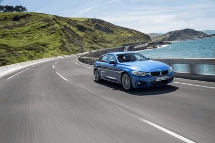 2014 BMW 428i Gran Coupé M Sport 5