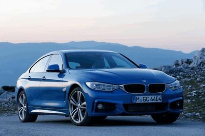 2014 BMW 428i Gran Coupé M Sport 42