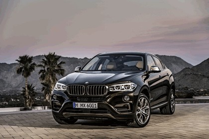 2014 BMW X6 ( F16 ) xDrive50i 32