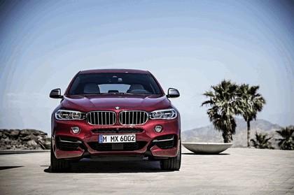 2014 BMW X6 ( F16 ) M50d 1