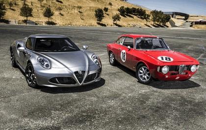 2015 Alfa Romeo 4C - USA version 131