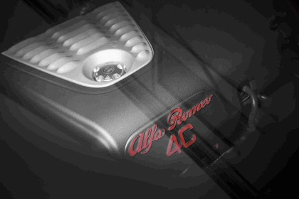 2015 Alfa Romeo 4C - USA version 166