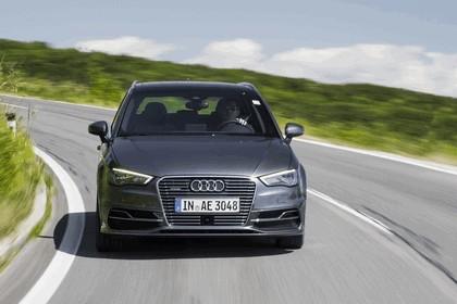 2014 Audi A3 Sportback e-tron 16