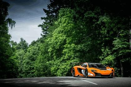 2014 McLaren 650S GT3 10