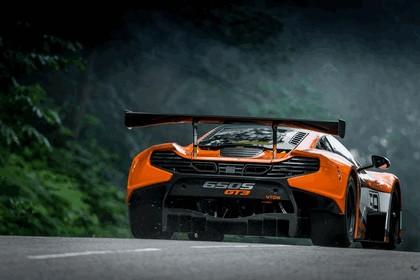 2014 McLaren 650S GT3 12
