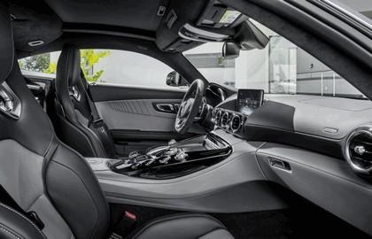2014 Mercedes-Benz AMG GT 31