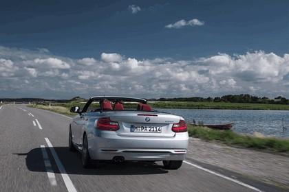 2014 BMW 228i ( F23 ) convertible 24