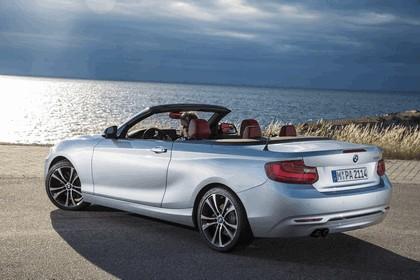 2014 BMW 228i ( F23 ) convertible 31