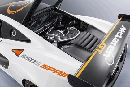 2014 McLaren 650S Sprint 7
