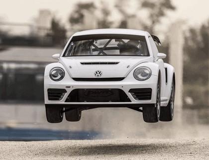 2014 Volkswagen Global Rallycross Beetle 1