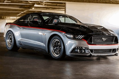 2014 Ford Mustang by Watson Racing 2