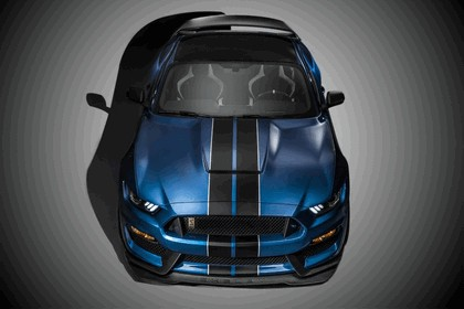 2015 Ford Shelby Mustang GT350R 3