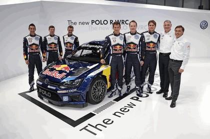 2015 Volkswagen Polo R WRC 12
