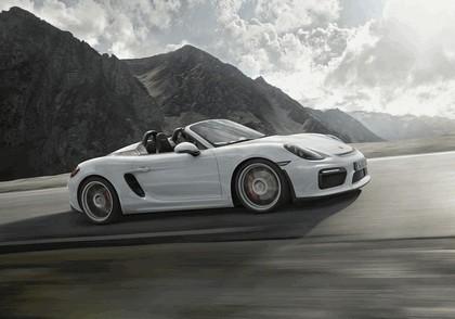 2015 Porsche Boxster 10