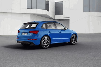 2015 Audi SQ5 TDI plus 3