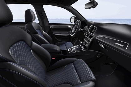 2015 Audi SQ5 TDI plus 13