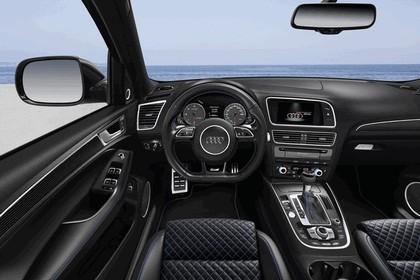 2015 Audi SQ5 TDI plus 14
