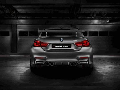 2015 BMW Concept M4 GTS 5