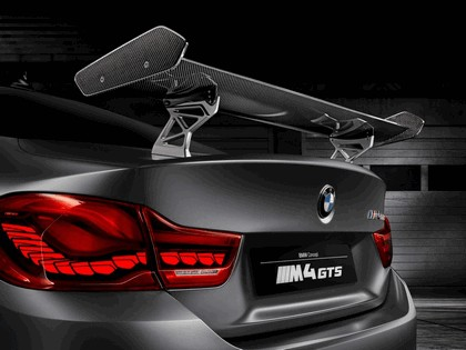 2015 BMW Concept M4 GTS 7