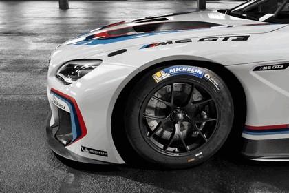 2015 BMW M6 GT3 14
