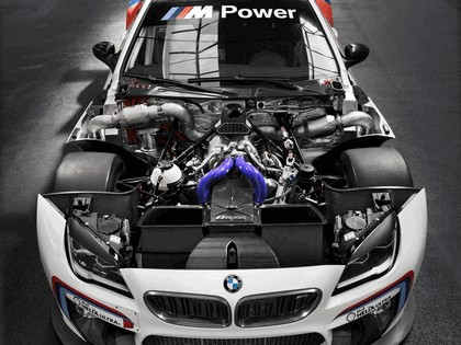 2015 BMW M6 GT3 23