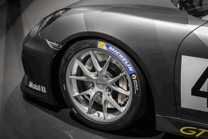 2015 Porsche Cayman GT4 Clubsport 2