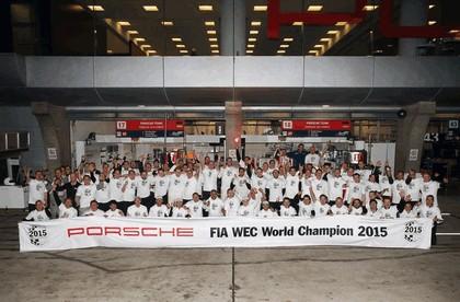 2015 Porsche 919 Hybrid 367