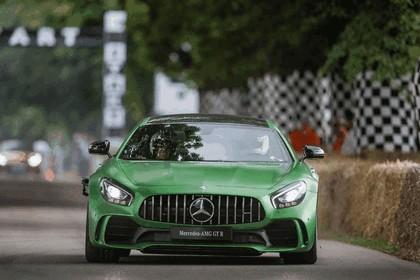 2016 Mercedes-AMG GT R 34
