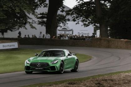 2016 Mercedes-AMG GT R 38