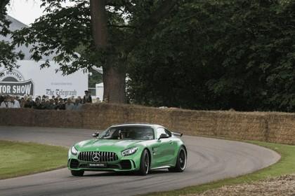 2016 Mercedes-AMG GT R 39