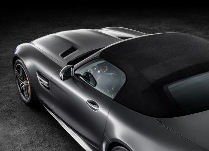 2017 Mercedes-AMG GT C roadster 9