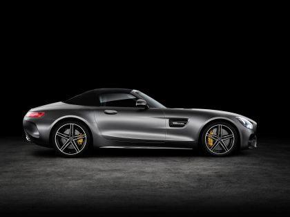 2017 Mercedes-AMG GT C roadster 10