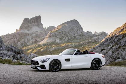 2017 Mercedes-AMG GT C roadster 13